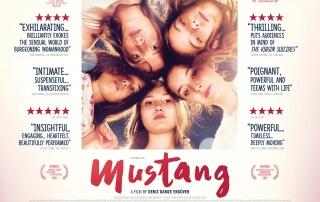 MUSTANG (15)