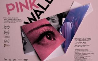 PINK WALL (15)