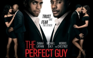 THE PERFECT GUY (15)