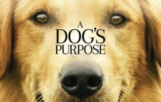 A DOG'S PURPOSE (PG)
