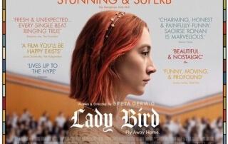 LADY BIRD (15)