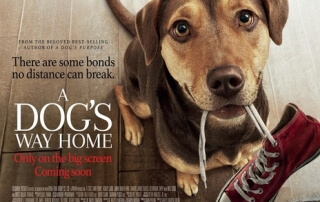 A DOG'S WAY HOME (PG)