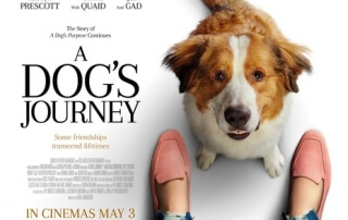 A DOG'S JOURNEY (PG)