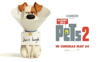 The Secret Life of Pets 2 (Review)