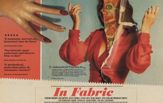 In Fabric (Review)