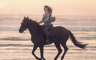 Black Beauty (Review)